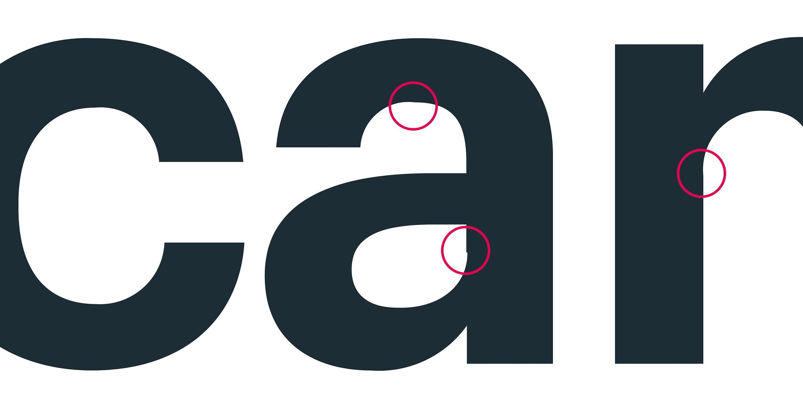 Basecam wordmark errors